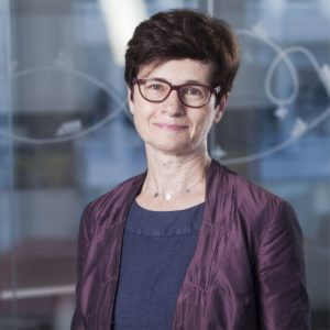 prof. dr hab. Halina Brdulak